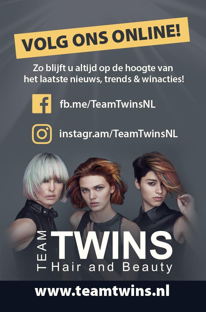 Foto Logo Team Twins