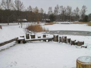 Foto Daoler Tuun sneeuw