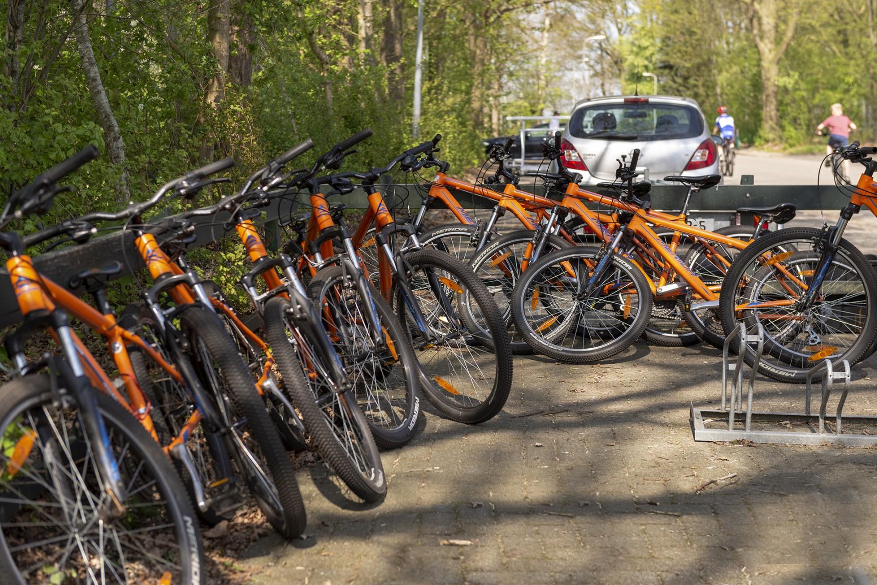 Foto De mountainbikes staan klaar voor de mtb-clinic op het t Grootveld; april 2019