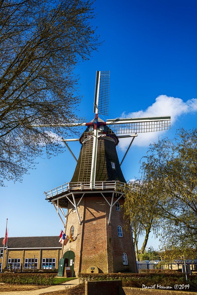 Foto gemaakt van de molen Jan Pol op de nationale molendag 2019.