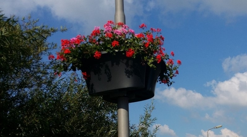 foto hangen baskets met bloemen centrum Dalen