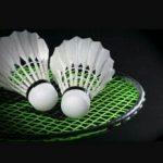 Foto groen badmintonracket