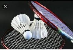 Foto rood badmintonracket