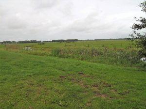 Foto uitzicht over gras route Klompenpadtien
