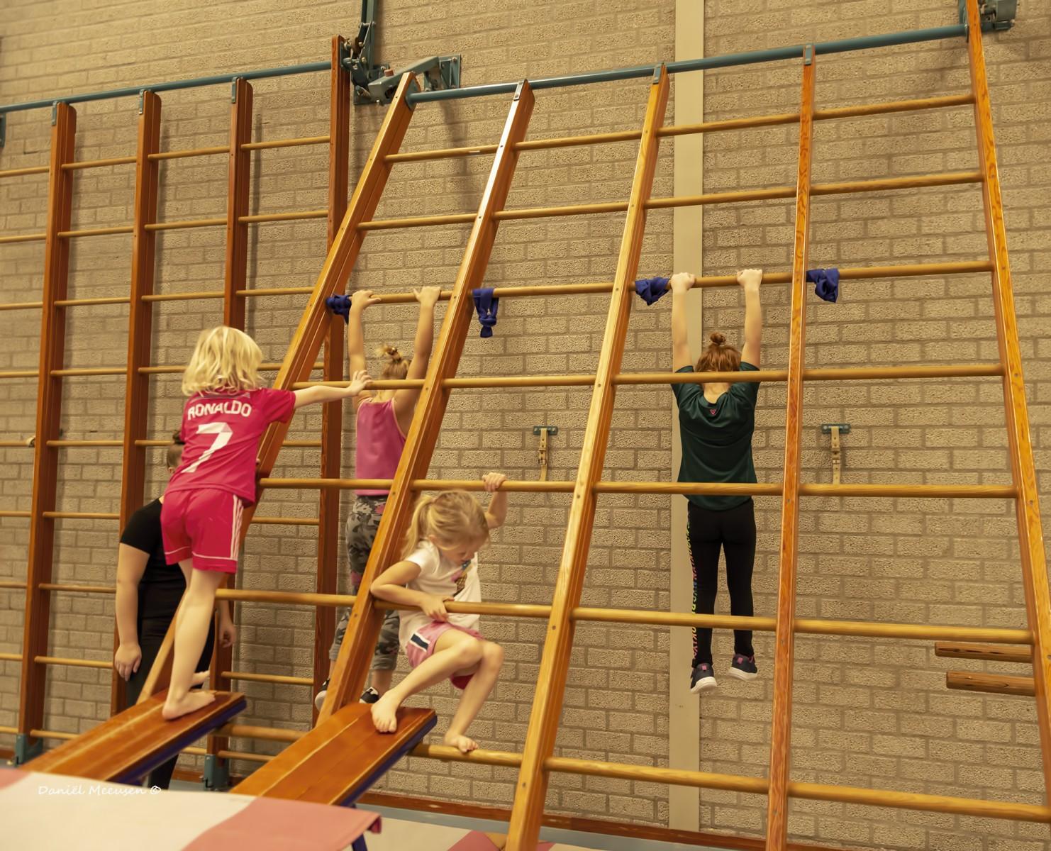 Foto Gyminstuif in gymzaal Dalen