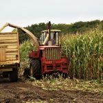 Foto van oldtimer hakselmachine aan het hakselen, terwijl de meteen de mais in een naast rijdende wagen blaast tijdens de oldtimer hakseldag in Dalen; okt.2019..