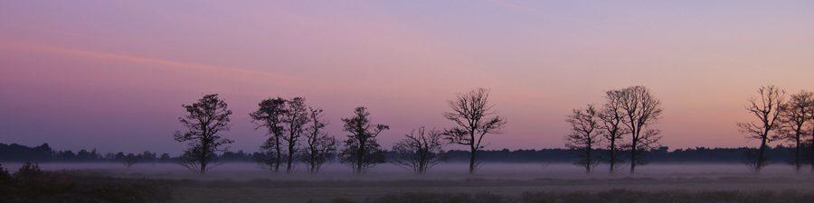 Kopfoto zonsopkomst herfst
