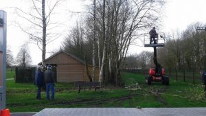 Foto snoeiwerkzaamheden Daoler Tuun met hoogwerker
