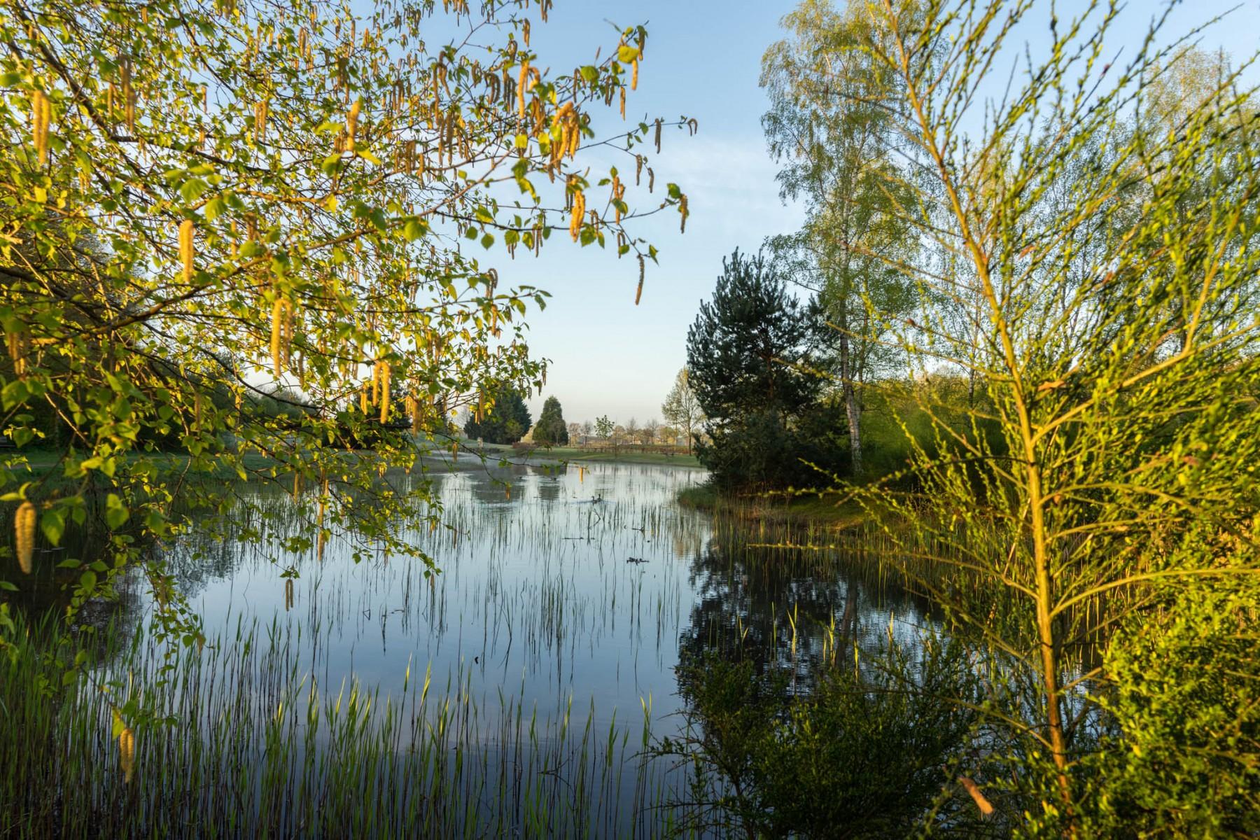 Foto vroeg voorjaar Daoler Tuun