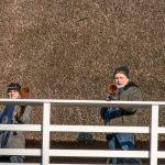 Foto midwinterhoornblazers Molen Jan Pol