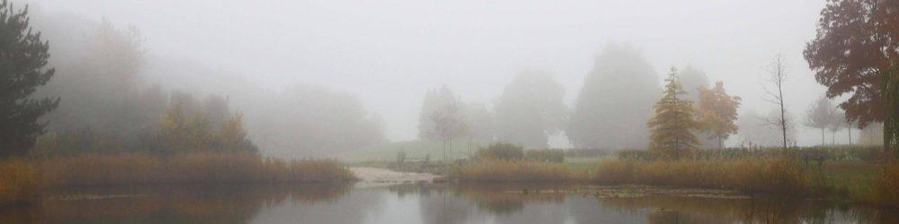 Foto mistige atmosfeer Daoler tuun