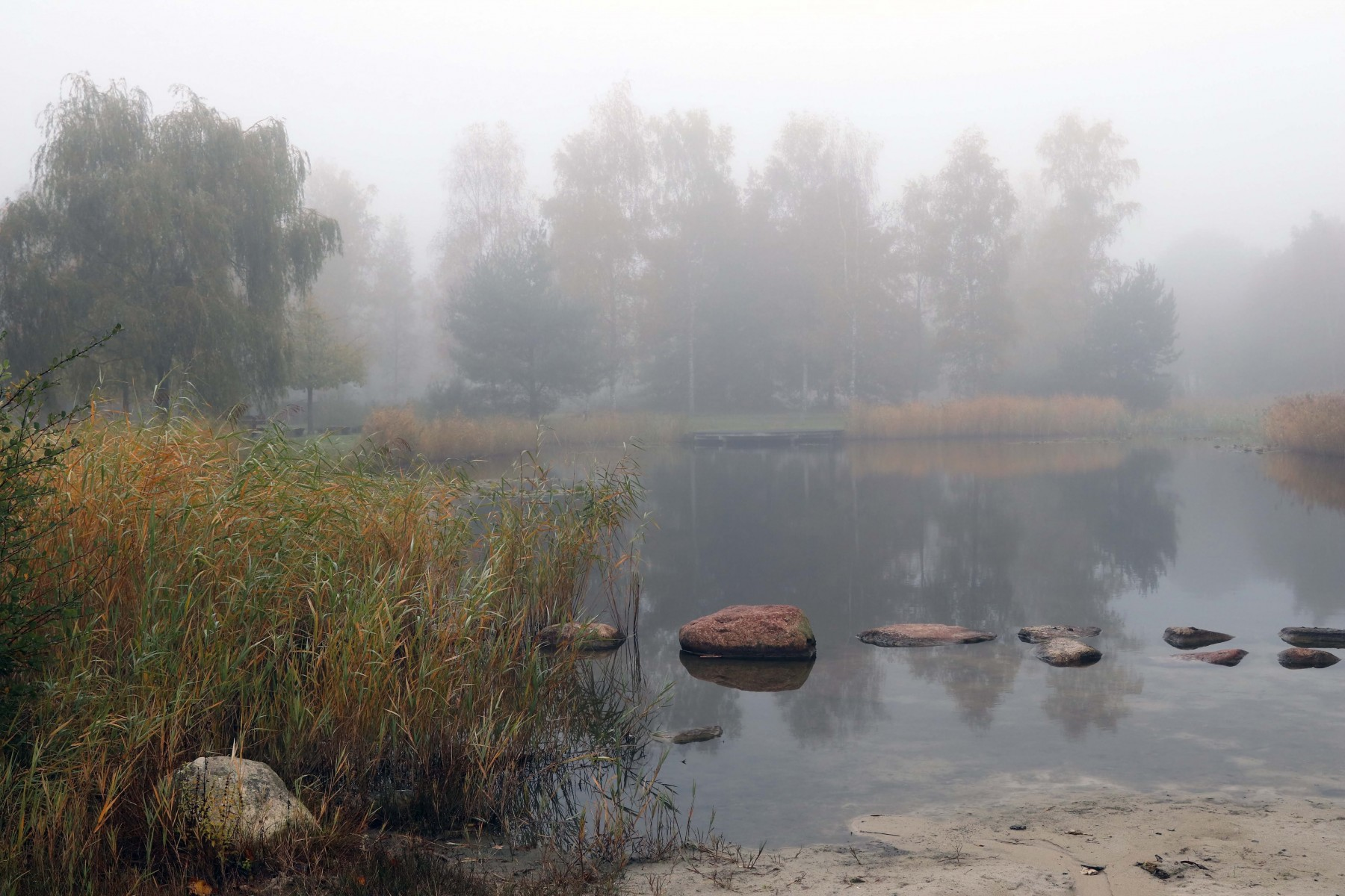 Daoler Tuun in de herfst met mist