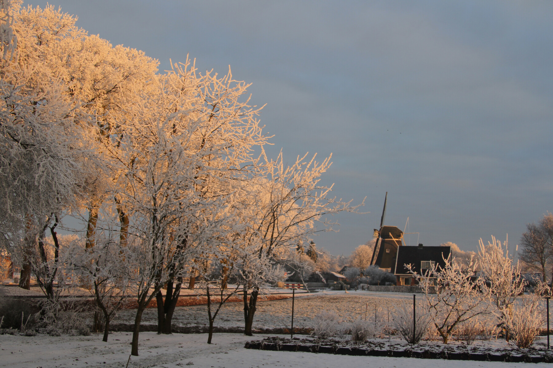 Winterfoto molen De Bente Looweg