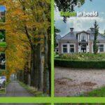 Foto omslag album Plus Aold Daoln