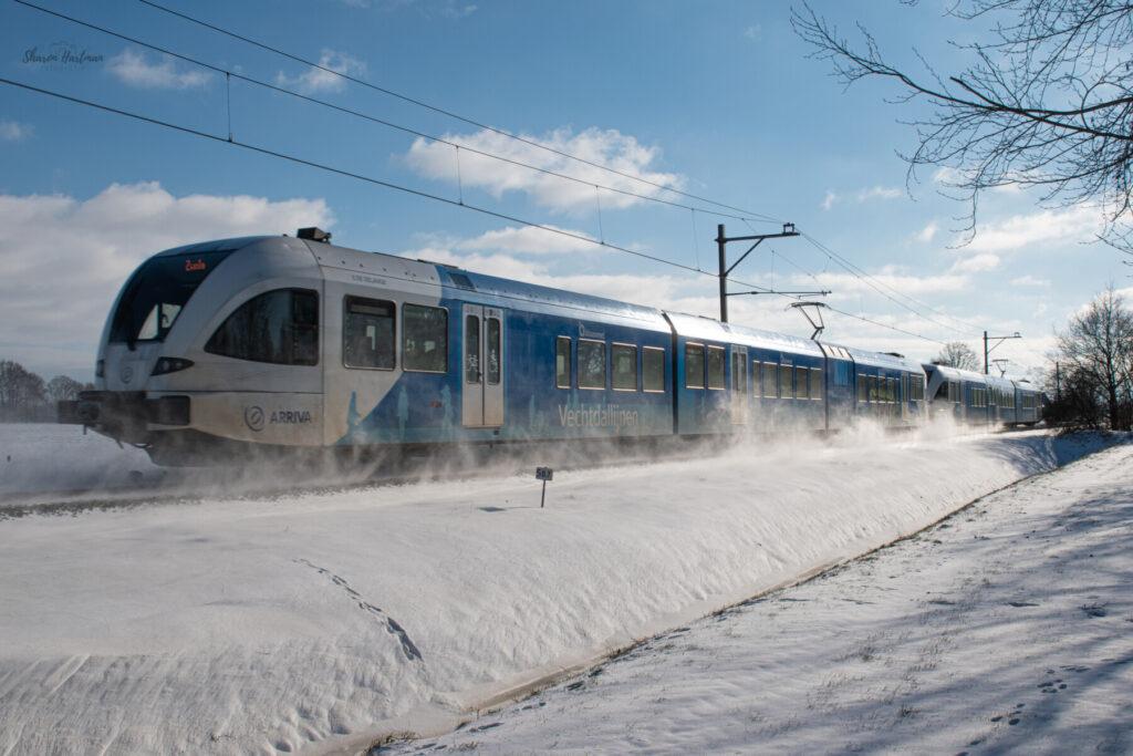 Sneeuw Dalen