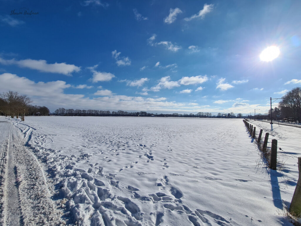 Sneeuw Dalen Daolertuun