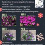Flyer bloemenactie gymvereniging