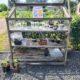 Plantenbieb aan de Kymmelskampen